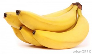 What is a Cavendish Banana?